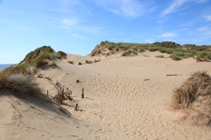 Sand dune runs - How players used to do pre season training  (Image from Wikipedia)
