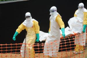 The Ebola virus has spread panic across the globe since the first cases were diagnosed  (Image from Getty)