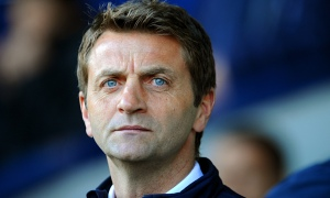 Down and Out - Tim Sherwood (Image from Getty)